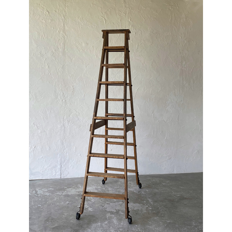 library ladder-2